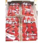 大粒いちご 送料無料  紅ほっぺ 静岡県産 平詰めパック320g×4パック 11〜15粒×4パック