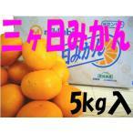 お歳暮ギフト 送料無料 静岡県産三ケ日みかん ミカちゃんマーク 秀品L・Mサイズ5kg入り 選択可