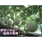 訳あり 送料無料 静岡産 温室マスクメロン アローマ印 2玉入 約1.2kg×2玉