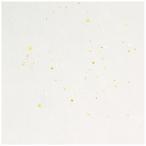 コクヨ  インクジェットプリンタ用紙 和紙 金銀柄 A4 10枚入 KJ-W110-5  ●お得な10パックセット