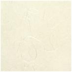 コクヨ  インクジェットプリンタ用紙 和紙 流雲柄 A4 10枚入 KJ-W110-7