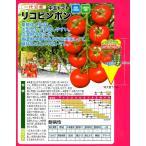 【ミニトマト】 ナント種苗  中玉ミディトマト 「リコピンポン」 15粒 ★新タネは12月以降のお届けを予定