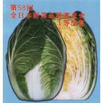 【ハクサイ】 松島交配 「秋の祭典」 70日型 1dl ★送料無料/代引不可★新タネのお届けは6月以降となります