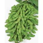 【黒枝豆】 サカタのタネ 早生 「夏の装い(なつのよそおい)」  1dl ★2月以降のお届け予定となります。