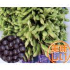 【枝豆】 トキタ種苗 早生 「黒真珠(くろしんじゅ)」  1dl ★2月以降のお届け予定となります