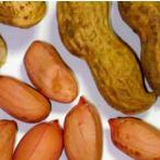 【落花生】 「タチマサリ」 極早生種  1dl ★剥き皮種子です ★3月以降のお届けを予定