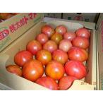 国産 訳ありトマト約3kg入りX1ケース