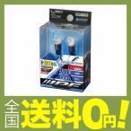 IPF ポジションランプ LED T10 バルブ 130ルーメン 6500K 302W