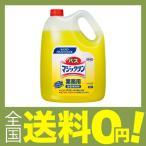 ショッピング商品 バスマジックリン 4.5L(花王プロフェッショナルシリーズ)