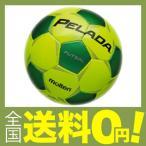 molten(モルテン) ペレーダフットサル3000 ( Pelada FUTSAL ) JFA検定球 F9P3000-YG