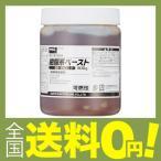 ショッピングプリント グット 樹脂系ペースト500g BS850
