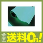 中川ケミカル 蓄光ルーナシート25mm幅 10m 0025RUNA10