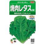 サカタのタネ 実咲野菜3674 チマ・サンチュ 焼肉レタス(緑) 10袋セット