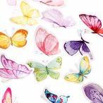 Kamizuki シール 蝶 カラフル 蝶の庭 花壇 手帳シール スッテカー DIY 手作り 日記 ダイアリー カレンダー アルバ