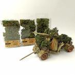 灌木セット 薄緑色 情景用素材 情景コレクション グラス模型 建物モデル 装飾 風景 箱庭 鉄道模型 ジオラマ PJ