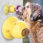 吸盤犬 知育玩具 ワンちゃん舐めおもちゃ 噛む玩具 犬歯ブラシ シャワー玩具 暇つぶし ストレス解消 (イェロ