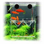 PANASONN 産卵ケース 隔離ケース 多機能 魚 繁殖隔離飼養ボックス メダカ 産卵 水槽 孵化 産卵箱 水族館アクセサ