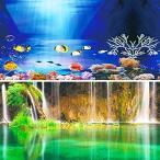 水槽 魚タンク バックスクリーン 両面印刷 背景 水族館ポスター 水槽の飾り -D- (60x40cm)