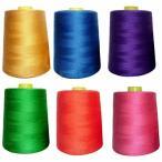 ledmomo ミシン刺しゅう糸 ミシン糸 カラー糸 刺繍糸 ソーイング糸 手縫い飾り糸 DIY刺繍糸 6000ヤード 6個セット