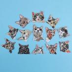 SAVORI ワッペン アップリケ アイロンワッペン刺繍 動物 ねこ 猫 13枚セット おしゃれ キャラクターワッペン パ