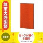 レイメイ藤井 ツァイトベクター クロスペーパー名刺ファイル 120ポケット オレンジ ZVM121D
