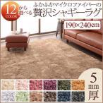 送料無料 軽量 絨毯 ラグ マット 手洗い リビング 床暖対応 シンプル ラグマット カーペット 床暖房対応 190×240cm じゅうたん シャギーラグ 500027249