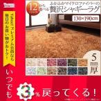 シャギーラグ - 軽量 絨毯 ラグ マット 手洗い 厚さ5mm シンプル 床暖対応 リビング ラグマット カーペット じゅうたん 130×190cm 新生活応援 床暖房対応 シャギーラグ