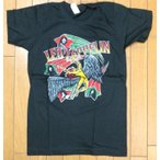 Yahoo!SHINSEITECHバンド(ロック)Tシャツ LED-ZEPPELIN SMLサイズ BN 小さ目のTシャツ サイズ注意!