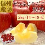 長野県産サンふじ特秀5kg(14〜18玉) No.539