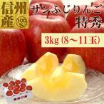 長野県産サンふじ特秀3kg(8〜11玉) No.532