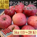 長野県産訳あり家庭用サンふじ5kg(13〜20玉)No.586