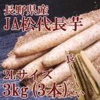 長野県産 JA松代長芋 秀2L 3kg(約3本)【681】とろろ芋