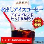 アイスコーヒー コーヒー 水出しコーヒー 福袋 珈琲 500g ドリップ 送料無料 信州珈琲 コーヒー豆 ハリオ水出し珈琲ポットをお持ちの方用