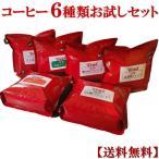 コーヒー 信州珈琲 焙煎職人こだわりの自家焙煎 コーヒー豆 お試しセット6パック 福袋 たっぷり合計600g 送料無料
