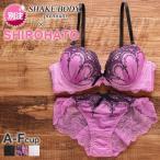 (シェイクボディー)Shake Body Classical Arch シリーズ SHIROHATO 別注 ボリュームアップ モールド 3/4カップ ブラショーツ セット