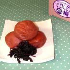 梅干  天然風味しそ梅干し600g 和歌山県産 紀州南高梅 ギフト