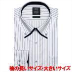 ワイシャツ 長袖 形態安定 マイター ボタンダウン 綿100% 白×ブルーストライプ 袖の長い・大きいサイズ