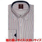 ワイシャツ 長袖 形態安定 ドゥエボットーニ ボタンダウン 白×エンジ、ネイビーストライプ 袖の長い・大きいサイズ スリム