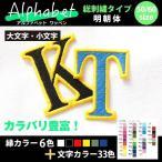 総刺繍アルファベット(明朝体 60mm)オーダー1文字ワッペン/42色/アイロン接着 オリジナル・ユニフォームのネーム(名入れ)に