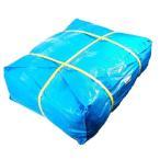 法人様宛限定 ブルーシート#3000 (輸入品) 厚手 10m×10m 2枚(1梱包) (K) 敷物 災害 台風 防災 養生 対策 海水浴 キャンプ 運動会