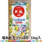 天塩の塩あめミックス(ぶどう・日向夏・パイン) 1kg  塩飴 熱中症対策 1kg 詰め合わせ 業務用 塩 飴 ミックス