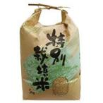 長崎県産 特別栽培米 ヒノヒカリ 玄米(5kg) 上島農産 2020年度産