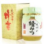 九州の蜂みつ れんげ(500g) 川口養蜂場 (旧名:奥八女の蜂蜜) 6月新商品