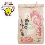 熊本県産 ピロール米 白米 にこまる(3kg) 上村夢農園 2019年度産