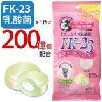 乳酸菌FK-23(フェカリス菌)・酒石酸含有 オリゴ糖入りキャンディ(38g(個包装を含む)) ニチニチ製薬 5月新商品