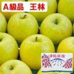 王林(おうりん)青森りんご(約5kg)A級品 竹嶋有機農園 メーカー直送につき代引・同梱・海外発送不可 2020年度産