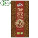 チョコレートソール オーガニックダークチョコレート100%(100g) ミトク 冬季限定 11月新商品