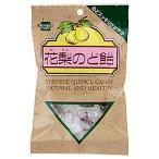 花梨のど飴(100g) 健康フーズ