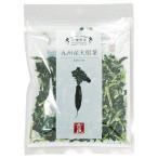 乾燥野菜 大根葉(40g) 吉良食品