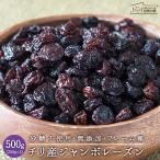 ジャンボレーズン 500g (250g×2) チリ産 フレーム種 砂糖不使用 無添加 送料無料 ドライフルーツ チャック付き 大粒 干しぶどう ● 非常食 ミネラル